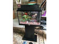 65l Juwel fish tank full set up with stand filter heater light gravel ornament lid all work in pic