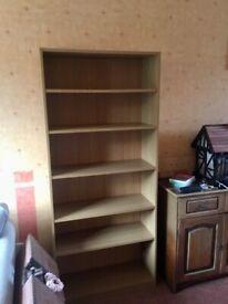 Shelf Unit for Books/DVDs/Display