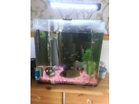 Fish tank / aquarium