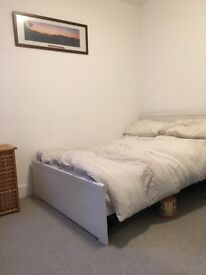 Double room in large 2 bed flat available March, zone 1
