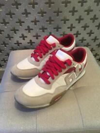 Miss sixty trainers