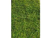 TURF TURF TURF SPORTSMAN GARDEN LAWN TURF TOP QUALITY ONLY £2.99 PER ROLL FRESHLY HARVESTED