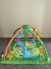 Fisher price Rainforest play mat