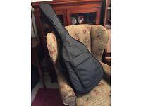 Fender Newport acoustic guitar