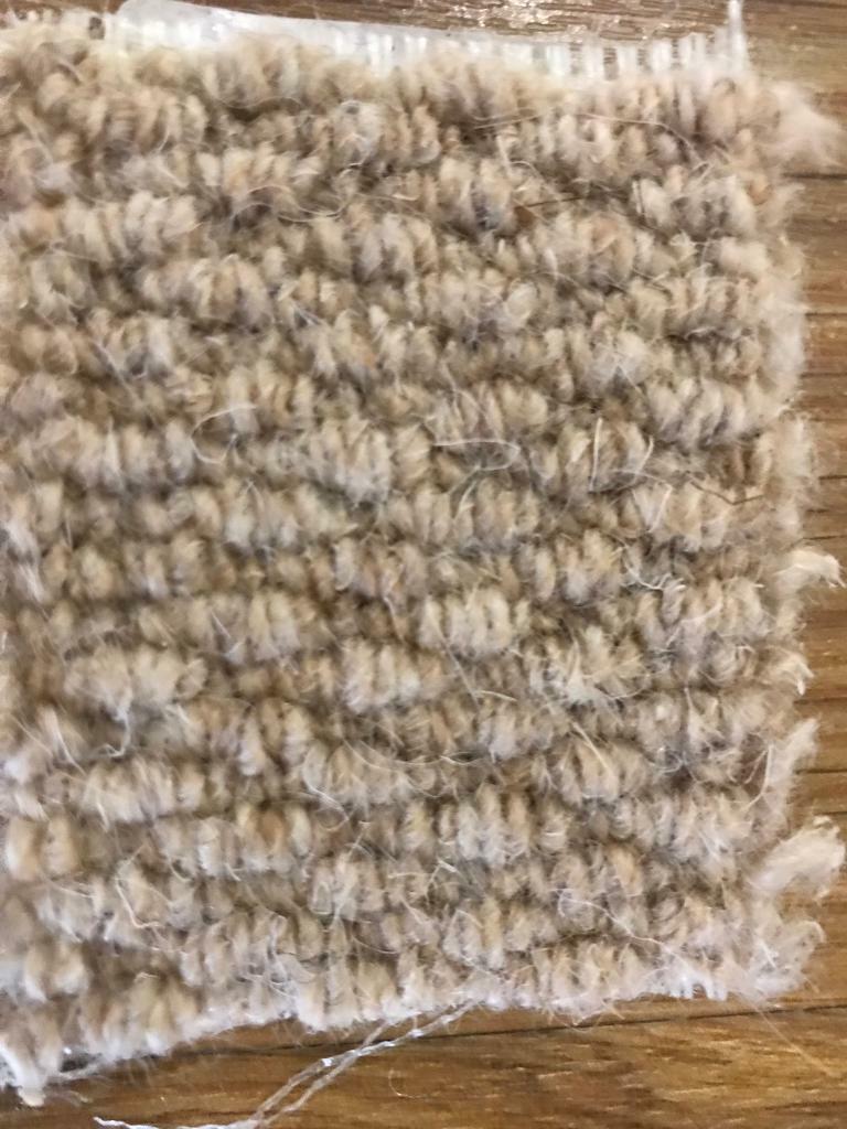 Brand New Wool Carpet Remnant In Norwich Norfolk Gumtree
