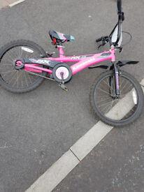 Kawasaki pink bike.