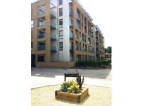 WONDERFUL NEW BUILD TWO BEDROOM APARTMENT IN CHELMSFORD