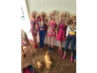 15 various Barbie & Barbie Style Dolls & Horse