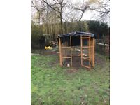 Chicken run and coop