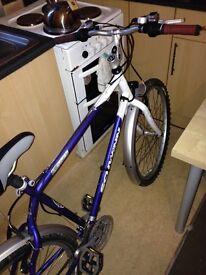Mountain bike everything works cheap