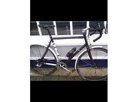 Condor bike fratello 58 cm campagnolo