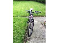 Ladies Muddy Fox Dune Sportz Mountain Bike