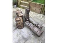 Seasoned Logs for firewood