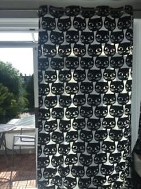 Ikea MATTRAM curtains (black and white cats)