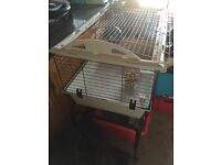Indoor hamster cage with stand