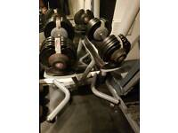 SOLD PENDING COLLECTION Bodymax selectabells adjustable dumbbell weights. 32.5kg each plus stand