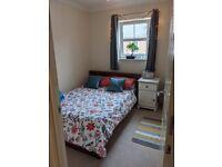 Double Room, Cheltenham (10min walk into town)