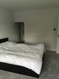 Room - Beautiful large room in Earley in newly extended family home