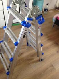 Telescopic Multi Purpose Combination Step Ladder