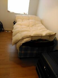 room share in a 2beds house