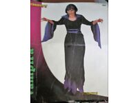 LONG BLACK WITH PURPLE TRIM VAMPIRE LADY FANCY DRESS SIZE 10 /12 GREAT FOR HALLOWEEN PARTY
