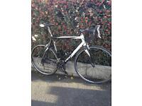 PINARELLO GALILEO Road Bike For Sale