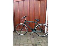 Mens bike -Dawes