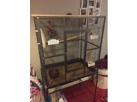 Large Bird Cage with everything to get started!!
