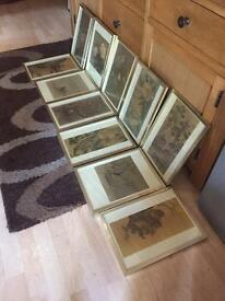 Set of 11 framed Chinese prints.
