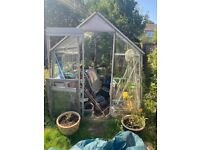 Green House Free to to whoever dismantle and take away !