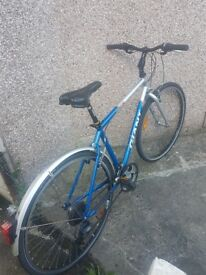Bicycle for sale. Giant Hyde Park. Great Condition