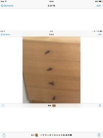 Chest of drawers very strong solid oak wood
