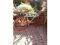 Adults fixie bike