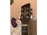 Brunswick BDS400 Acoustic Guitar and Case