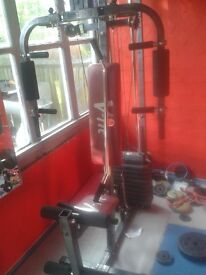 weights and equipment for gym
