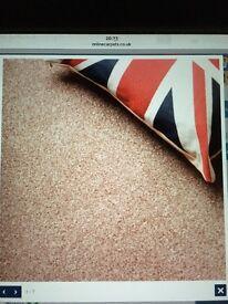 Splendid Saxony Carpet Brand New