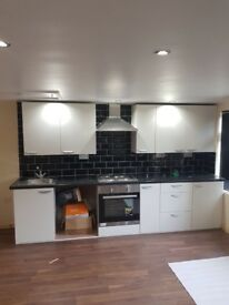 Studeo flat, Newly refurbished for professional lady