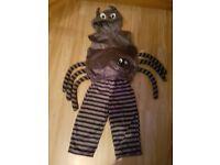spider costume 2-3 yeasr old