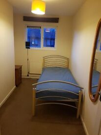 single room to rent in shared house