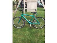 Raleigh Max green vintage mountain bike