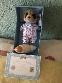 Meercat baby Oleg