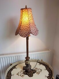 Lamp with lovely shade