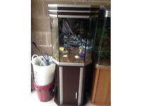 125l fish tank very nice full set up with stand filter 2 light heater gravel ornament all work