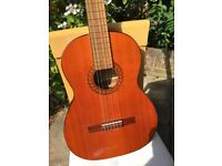 Acoustic guitar with soft case, beautiful tone, excellent condition