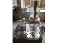 Kitchen Aid Artisan Mixer plus all attachments