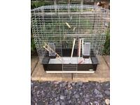 Bird / Budgie cage with accessories