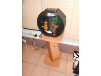 Aquarium with stand and everything for tropical fish including touch lighting