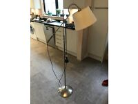 Floor/Reading Lamp