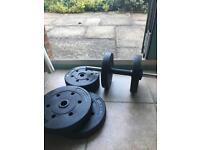 22.5kg dumbbell weights