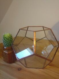 Copper Terrarium for Cactus or Succulents